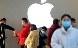 Bí quyết để Apple sống tốt trong đại dịch: Tìm thấy cỗ máy tăng trưởng mới, cổ phiếu vẫn liên tục hút tiền của nhà đầu tư