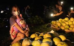 Đội đèn xuyên đêm bán bưởi Phúc Trạch đặc sản