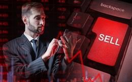 Phiên 7/9: Khối ngoại đẩy mạnh bán ròng 802 tỷ đồng, tâm điểm giao dịch bộ đôi VHM và SSI