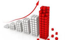 """Hàng loạt cổ phiếu vẫn """"tím lịm"""" bất chấp thị trường chung điều chỉnh"""