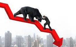 VnIndex mất tiếp 8 điểm, nhiều cổ phiếu nhóm HNX30 tăng giá