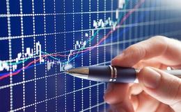 DIC Đồng Tiến có thêm cổ đông lớn mới, đã chi 33 tỷ đồng mua hơn 3 triệu cổ phần