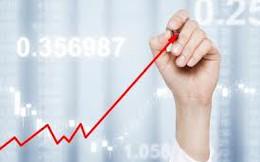 """66% cổ phiếu tăng giá trong tháng 5, nhà đầu tư NKG """"nhân đôi"""" tài khoản trong 1 tháng"""