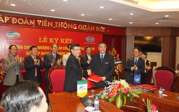 Viettel mua Xi măng Cẩm Phả giá hơn 1.000 đồng/cp, Vinaconex có cắt lỗ đúng đáy?