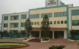 Lilama 3: Đưa nhà máy đóng tàu Bạch Hạc vào sử dụng, năm 2013 công ty mẹ lỗ