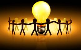 DQC, TPC: Giá vốn giảm mạnh, doanh nghiệp vui mừng vượt kế hoạch