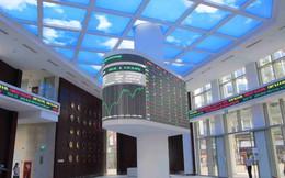 Soi danh mục đầu tư của các công ty chứng khoán: Có được hoàn nhập dự phòng?