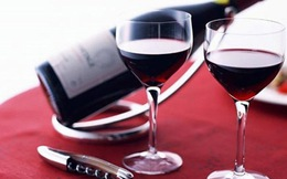 Khám phá những điều thú vị về rượu vang