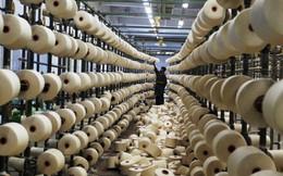 Dệt may Việt Nam chưa sẵn sàng với TPP?