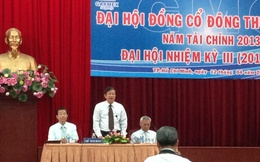 """Garmex SaiGon đặt kế hoạch LNTT 67 tỷ đồng, """"loay hoay tìm đường"""" cho dự án 213 Hồng Bàng"""
