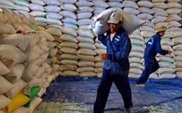"""Điều hành tạm trữ lúa gạo: Hiệp hội """"nhường"""" cho địa phương"""