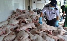 Bắt giữ xe chở thịt heo bệnh chuyển vào TP.HCM