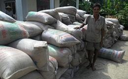 Mua tạm trữ lúa gạo: Chênh lệch vào túi ai?