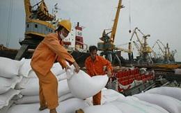 Thương lái Trung Quốc gian lận trong nhập khẩu gạo Việt