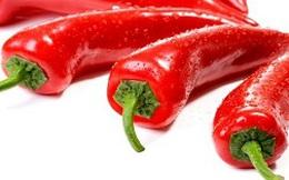Giá ớt tăng gấp 10 lần