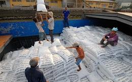 Ngành gạo vẫn có khả năng đạt mục tiêu xuất khẩu