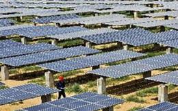 EC áp thuế chống bán phá giá với pin mặt trời Trung Quốc