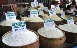 Nông dân Thái Lan phản đối cắt giảm giá mua lúa gạo