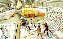 Lập đoàn kiểm tra thu mua, tạm trữ lúa gạo