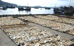 """Thâm nhập """"góc khuất"""" trong chế biến hải sản khô"""
