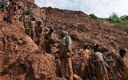 Vì sao các đại gia khai thác vàng thất bại thảm hại?