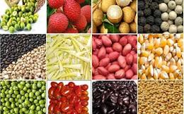 Mỹ thắt chặt quy định nhập nông sản