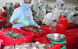 Quy định mới của FDA về thực phẩm nhập khẩu