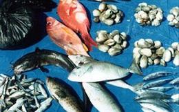 Nga cấm các loại thủy sản nhiễm khuẩn từ Việt Nam
