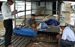 Giá cá điêu hồng quay đầu giảm