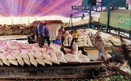 """Huỷ hợp đồng gần 1 triệu tấn gạo: Không thể xem là """"chuyện thường ngày"""""""