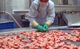 Xuất khẩu tôm Việt Nam sang EU có dấu hiệu khởi sắc
