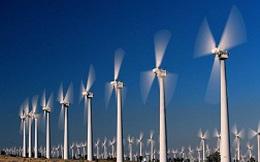Điện sạch giá cao có đắt hàng?