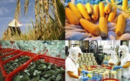 Xuất khẩu nông sản tháng 9 đạt gần 2,4 tỷ USD
