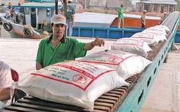 Xuất khẩu gạo: Hướng đến con số 7 triệu tấn