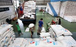 """120.000 tấn gạo bán cho Philippines: Liệu có """"xuôi chèo""""?"""