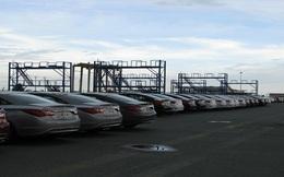 """""""Bỏ quên"""" lô ô tô tại cảng Tân Cảng-Cái Mép"""