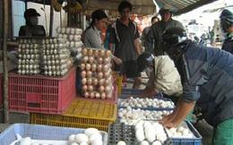 Giá trứng, thịt tăng nhẹ