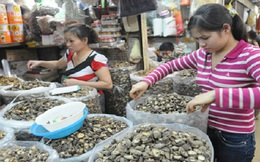 Thị trường nông sản tết khởi động chậm