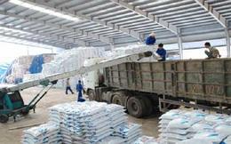 Cần giảm giá bán than cho ngành phân bón