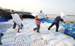 Việt Nam trúng thầu cung cấp 800.000 tấn gạo cho Philippines