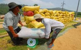 Cuộc chiến giá gạo: Việt Nam sẽ thua vì... phụ thuộc?