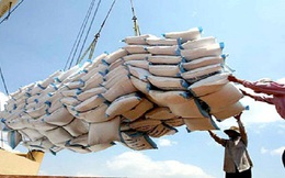 Philippines mở thầu mua 800.000 tấn gạo: Chưa hẳn là cơ hội cho gạo Việt