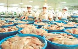Giá cá tra tại Mỹ tăng
