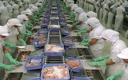 Phòng vệ thương mại: Điểm yếu của thủy sản Việt Nam