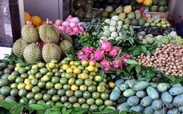 Nắng cháy: Chanh, dừa vừa bán vừa la vẫn đắt hàng