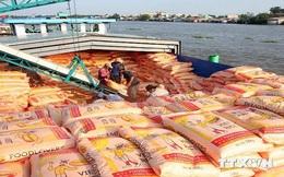 Xuất khẩu nông, lâm - thủy sản 5 tháng đạt 12,12 tỷ USD