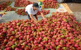 Gỡ khó cho rau quả xuất khẩu