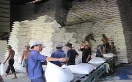 Bẫy nhập khẩu gạo từ Trung Quốc