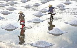 Giải bài toán sản xuất, xuất khẩu muối