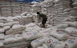 Philippines sẽ nhập khẩu thêm 250.000 tấn gạo